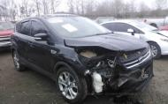 2013 FORD ESCAPE SEL #1290595956