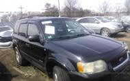 2002 FORD ESCAPE XLT #1300390749