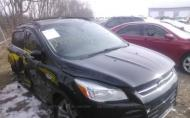 2013 FORD ESCAPE SEL #1302300036