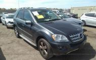 2010 MERCEDES-BENZ ML 350 #1303313096