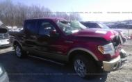 2011 FORD F150 SUPERCREW #1327826046