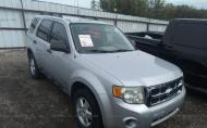 2008 FORD ESCAPE XLS #1428507526