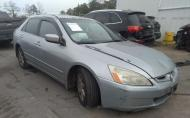 2003 HONDA ACCORD EX #1450945703