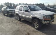 1999 JEEP GRAND CHEROKEE LAREDO #1639482736